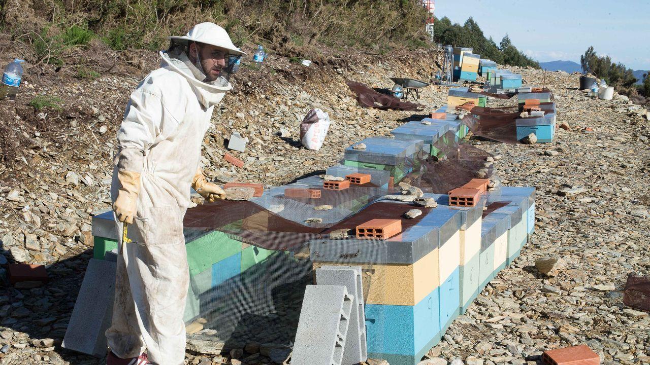 Brais Álvarez, apicultor, ha logrado terrenos del Banco de Terras en Xudán (A Pontenova)