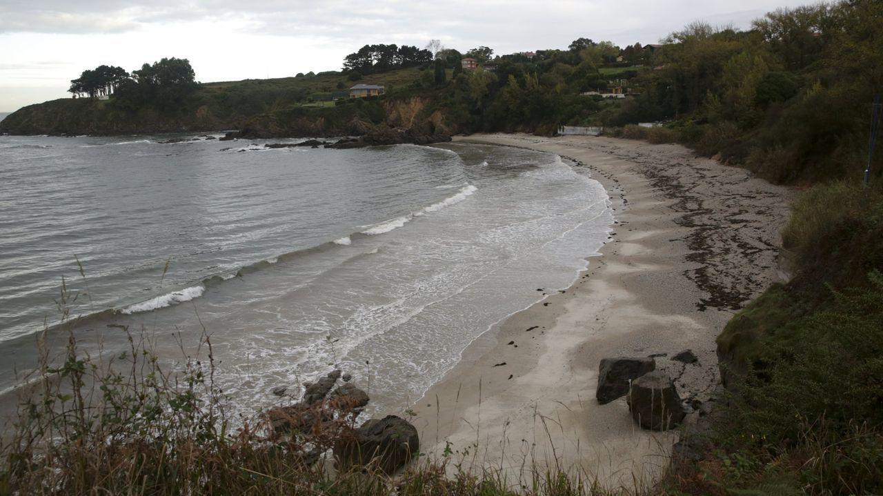 Cuando los tractores aranla ría en Pontevedra.El departamento autonómico llevará a cabo vigilancia sanitaria del arenal a partir de ahora