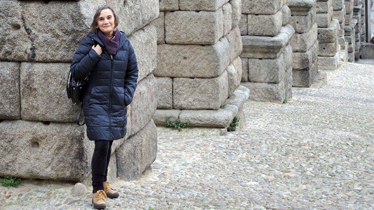 La catedrática de Conservación y Restauración del Patrimonio de la Universidad de Oviedo María Pilar García Cuetos