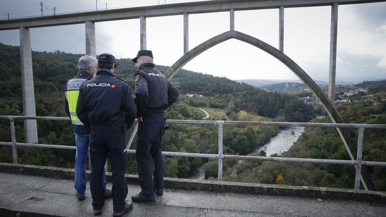 El psiquiatra Alfonso Mozos Ansorena desapareció el 5 de diciembre del 2017 en el puente ferroviario que salva el Ulla y une Vedra con A Estrada