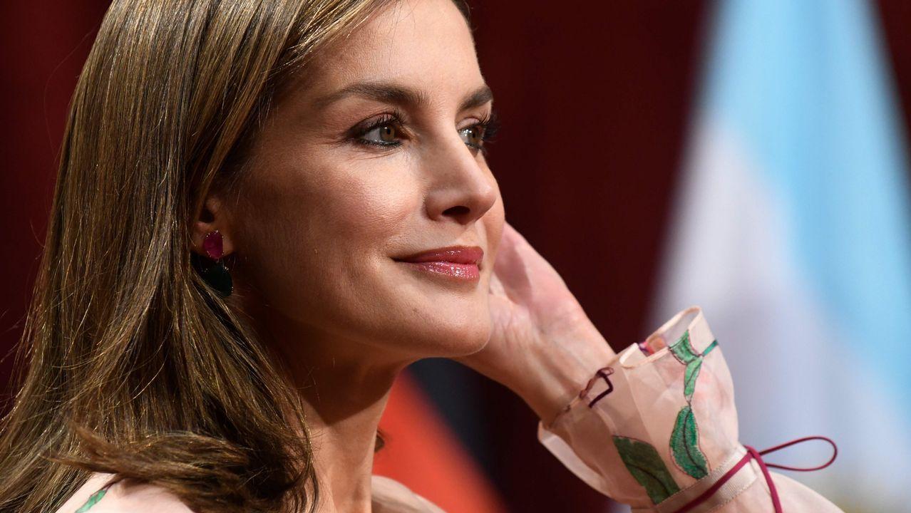 Para la entrega de las Medallas de Asturias Letizia ha optado por un vestido floreado, de organza rosa palo con flores y hojas verdes de Carolina Herrera con un favorecedor fruncido en las mangas