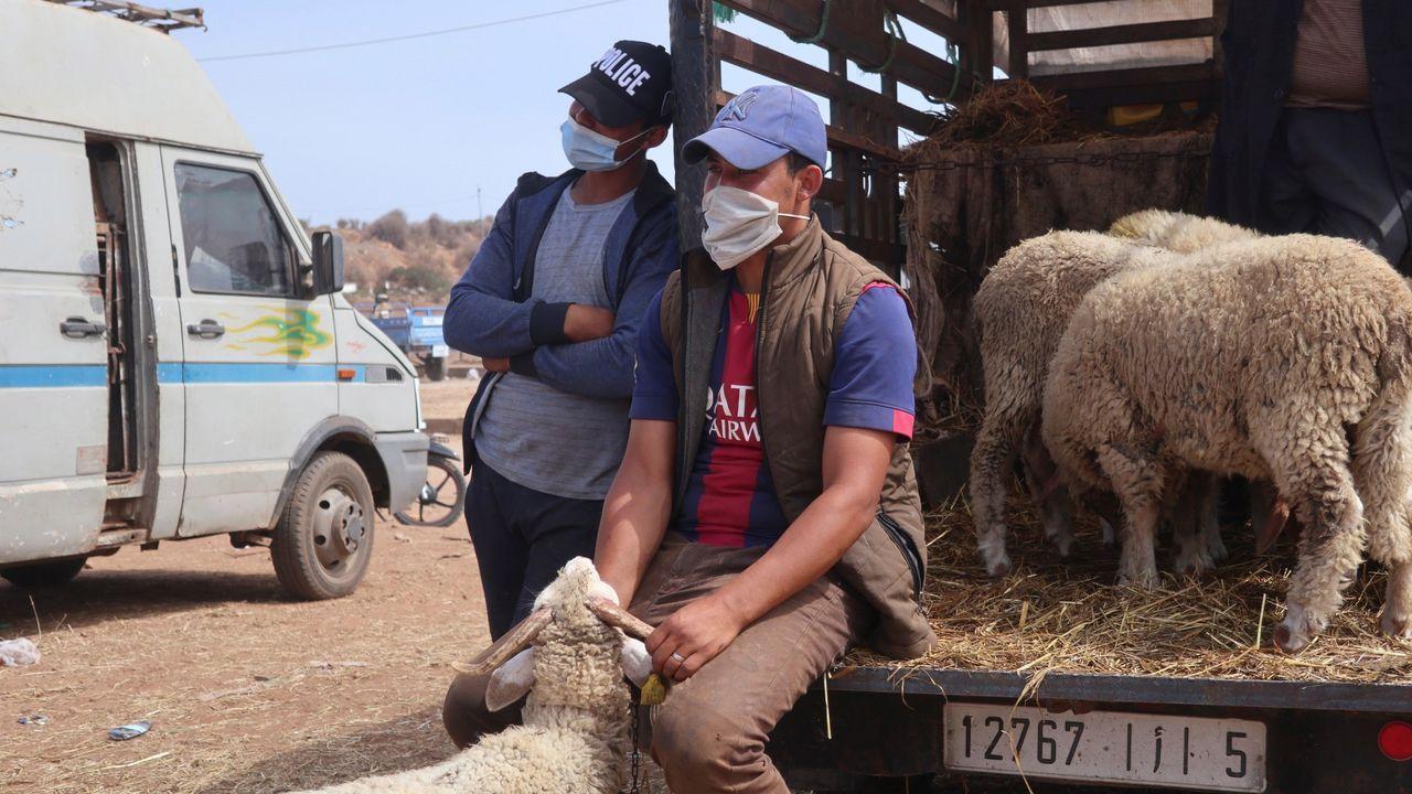 Marruecos celebra hoy la Fiesta del Sacrificio en medio de grandes restricciones por el aumento alarmante de casos de coronavirus, en un intento por lanzar un salvavidas a la agricultura y el mundo rural que viven este año el doble castigo de la sequía y la pandemia