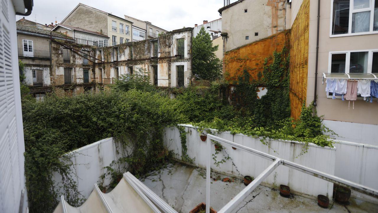 El crecimiento de la vegetación preocupa a los vecinos de un edificio colindante