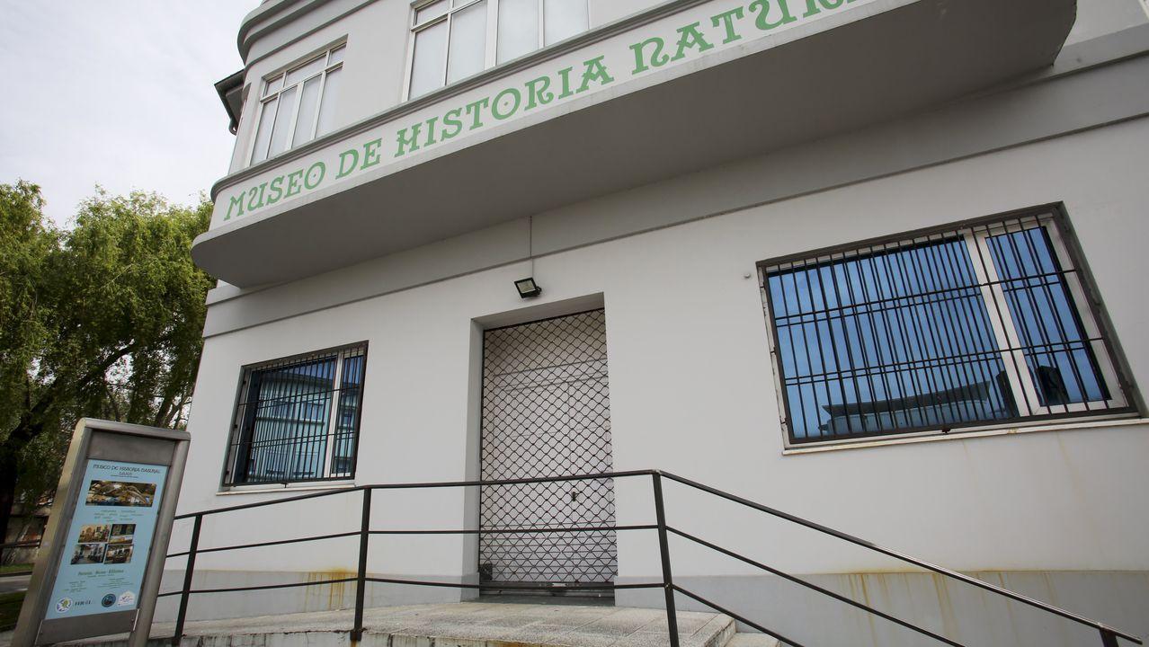 El museo de la SGHN reabrirá el próximo lunes si obtiene el visto bueno del Concello y cumple las diretrices de Gobierno central y Xunta