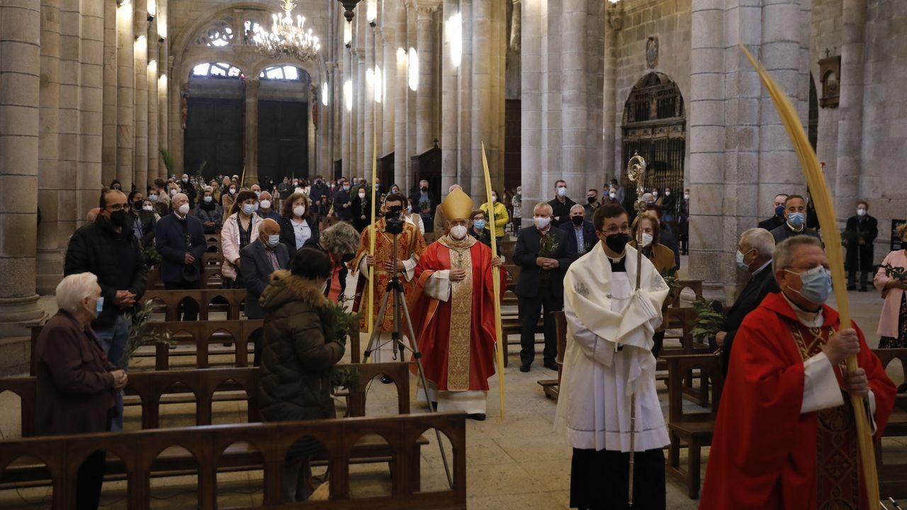 La misa del Domingo de Ramos estuvo oficiada por el obispo de Ourense, Leonardo Lemos