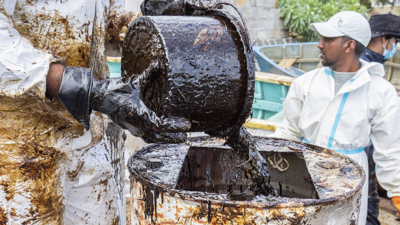 Voluntarios recogen el petróleo