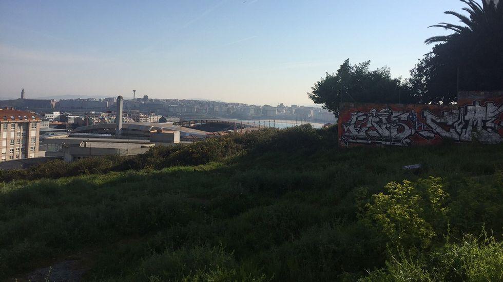 Las comparsas toman los juzgados de A Coruña