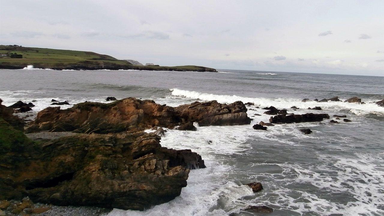 Recogida de ocle en Gozón.El litoral asturiano