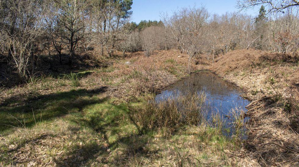 Un viejo canal minero cubierto de agua en la actualidad