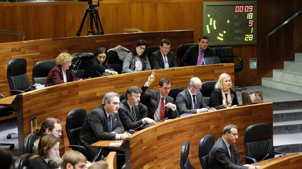 Una de las votaciones en el pleno de hoy de la Junta General del Principado