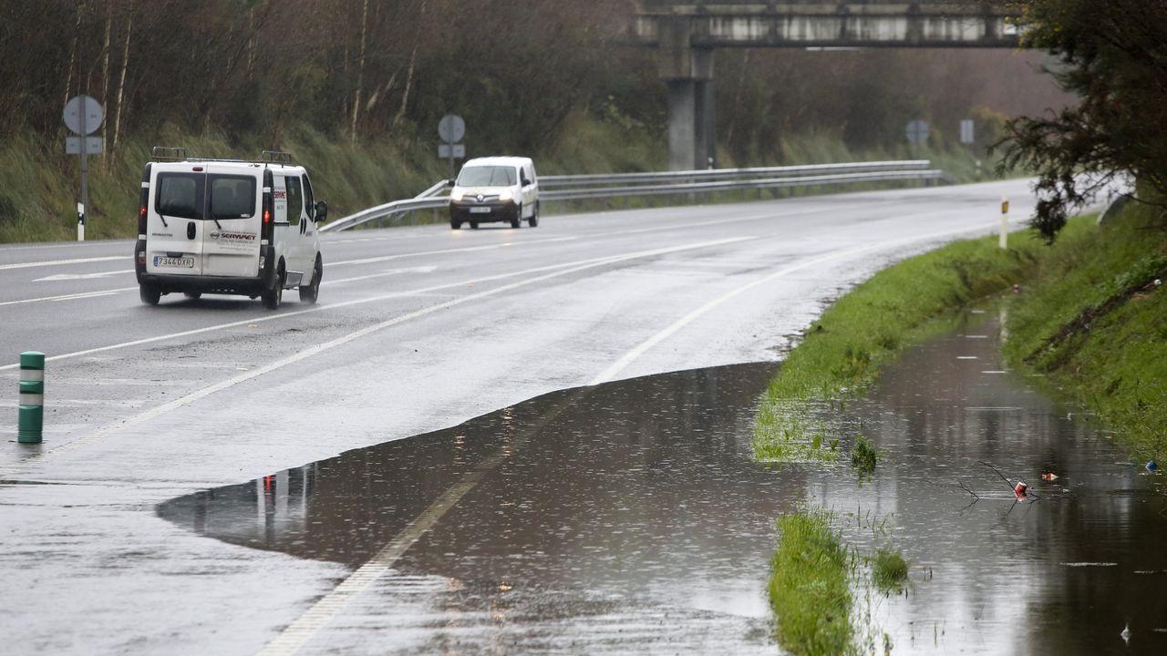 Las vergüenzas medioambientales de Ames.Baldosas de un paso de peatones en Oviedo