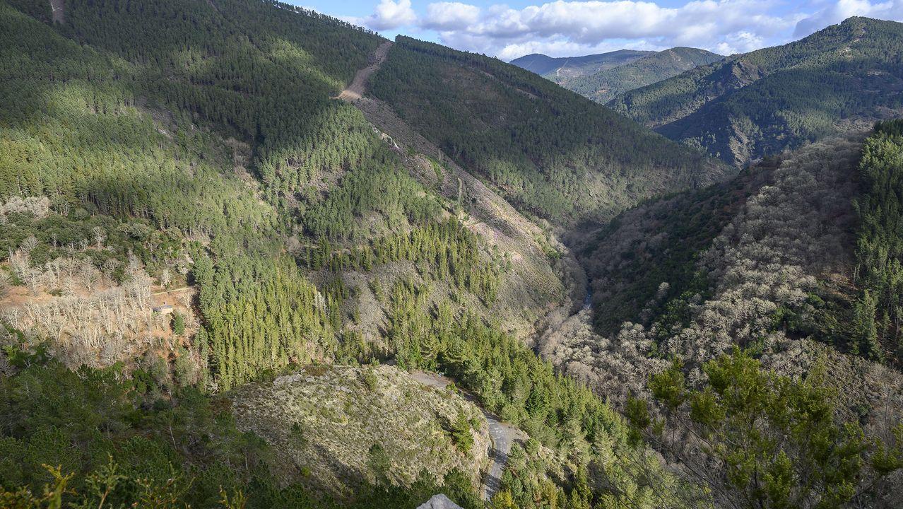 Desde el mirador de Pena dos Pasos se divisan el souto de Paramedela —a la izquierda— y el cañón del río Lor