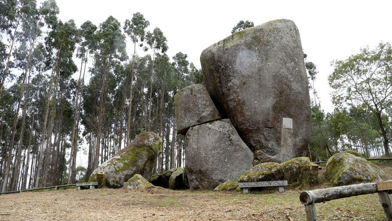 Pedra Longa, una tala polémica.El proyecto de María Manuela Salvó los carballos que se entremezclan con las cabañas