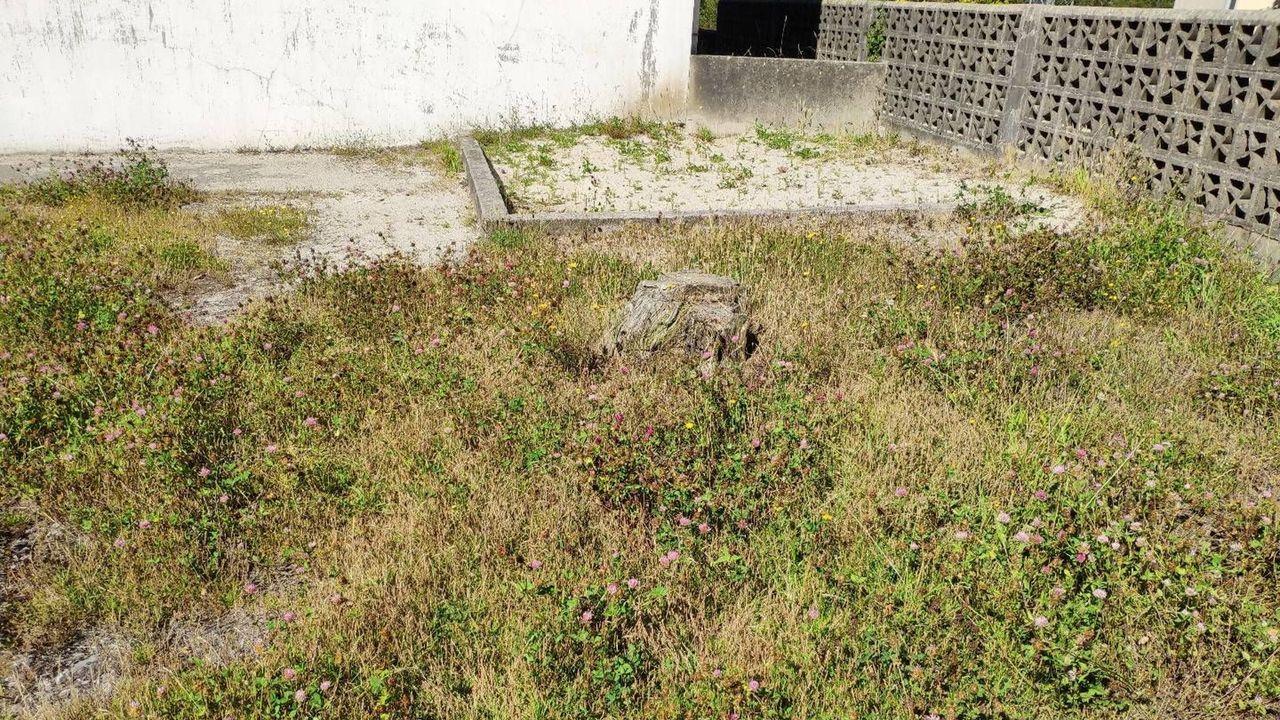 Hallazgos arqueológicos romanos en el rural lucense.Patio del colegio de Abadín, cuyo mal estado denuncia el PSOE