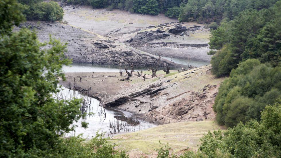El bajo nivel del embalse contrasta con la abundante vegetación de las orillas