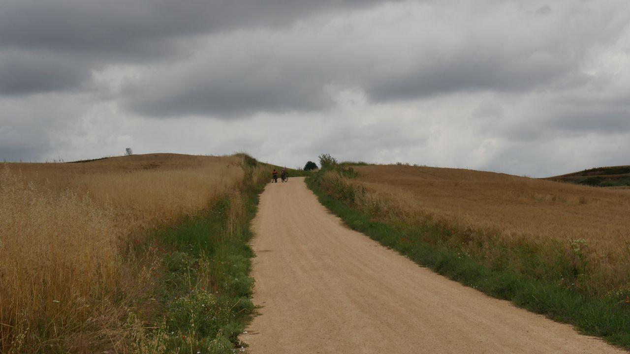 El Camino cerca de nuestro destino de hoy, Santo Domingo de la Calzada