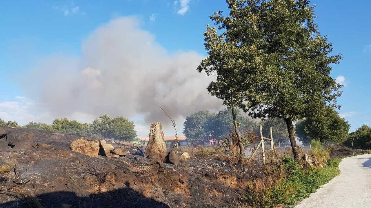 El terreno se quemó en las proximidades de la fábrica quesera Touza Vella