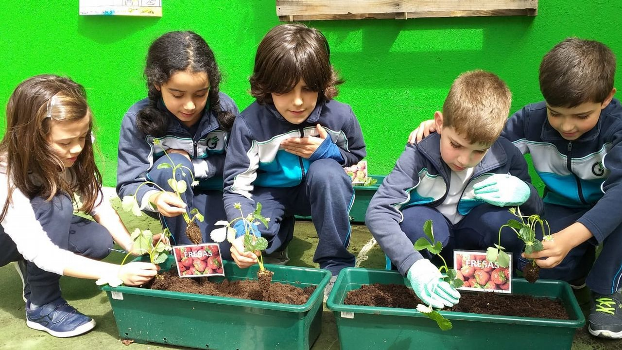 Voz Natura en el colegio San Miguel 2
