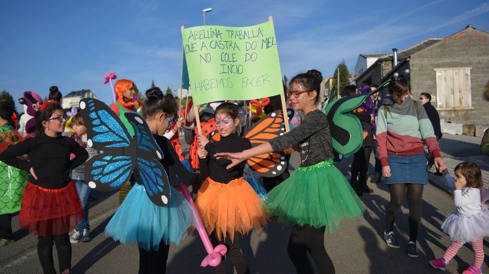 Comparsas en Chantada y Sober.Desfile de carnaval organizado en el 2017 por la asociación de padres del colegio de O Incio