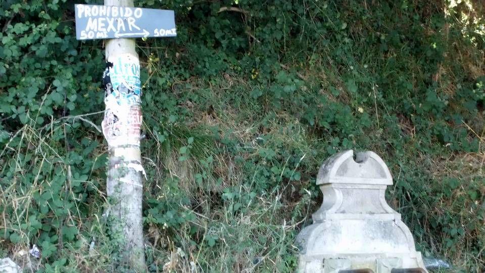 Cartel informativo «anti porcos».En Boimente, Santa Comba, se encuentra este curioso ejemplar de marquesina, sin duda la especie más polimorfa del rural gallego