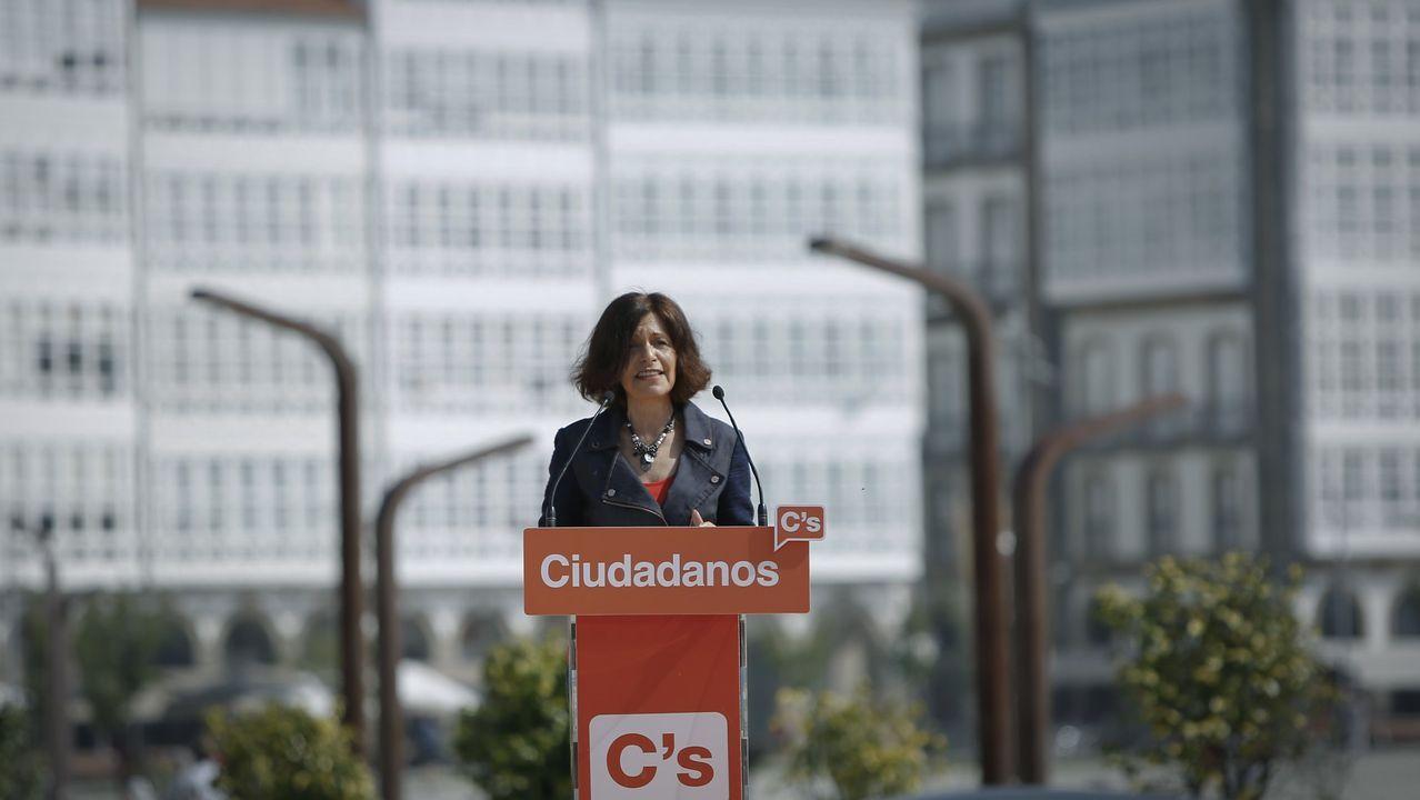 Ciudadanos se quedó lejos de alcanzar el 5 % para entrar en el Parlamento en las elecciones del 2016