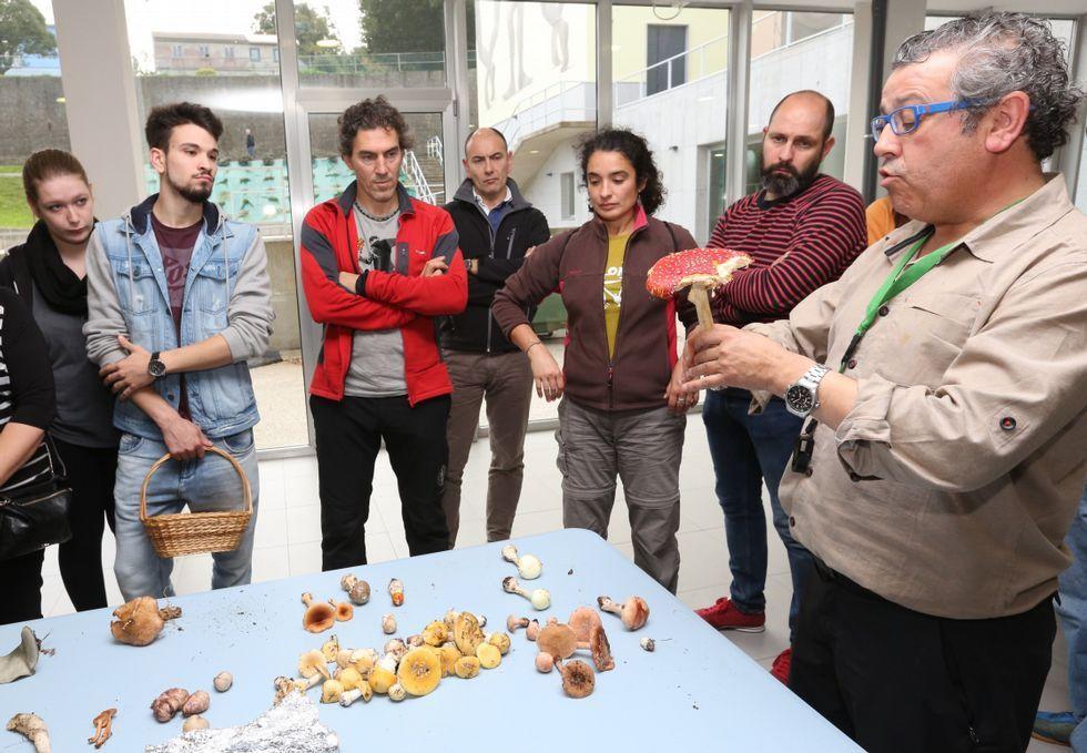 <span lang= es-es >Carballo</span>. La asociación Lumieira despidió el sábado sus octavas Xornadas Micolóxicas con una nueva salida y una sesión de catalogación y valoración.