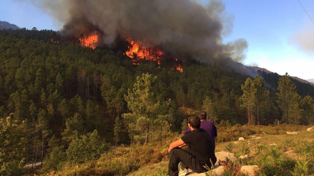 Tres incendios afectan al parque natural de A Baixa-Limia