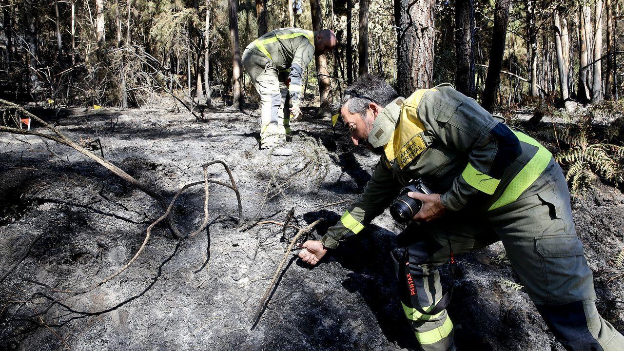 Investigan a dos vecinos con intereses en el monte que ardió en Mondariz