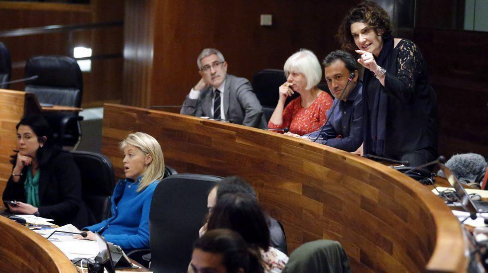 Proyecto de la Zalia.Marta Pulgar (IU), durante el pleno de la Junta