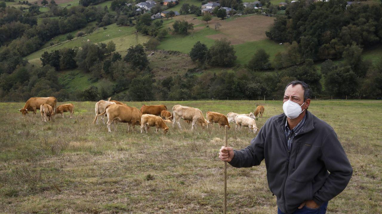 Un vecino de Pedrafita do Cebreiro fallece en el vuelco con su tractor.José Antonio, presidente de la cooperativa A Carqueixa