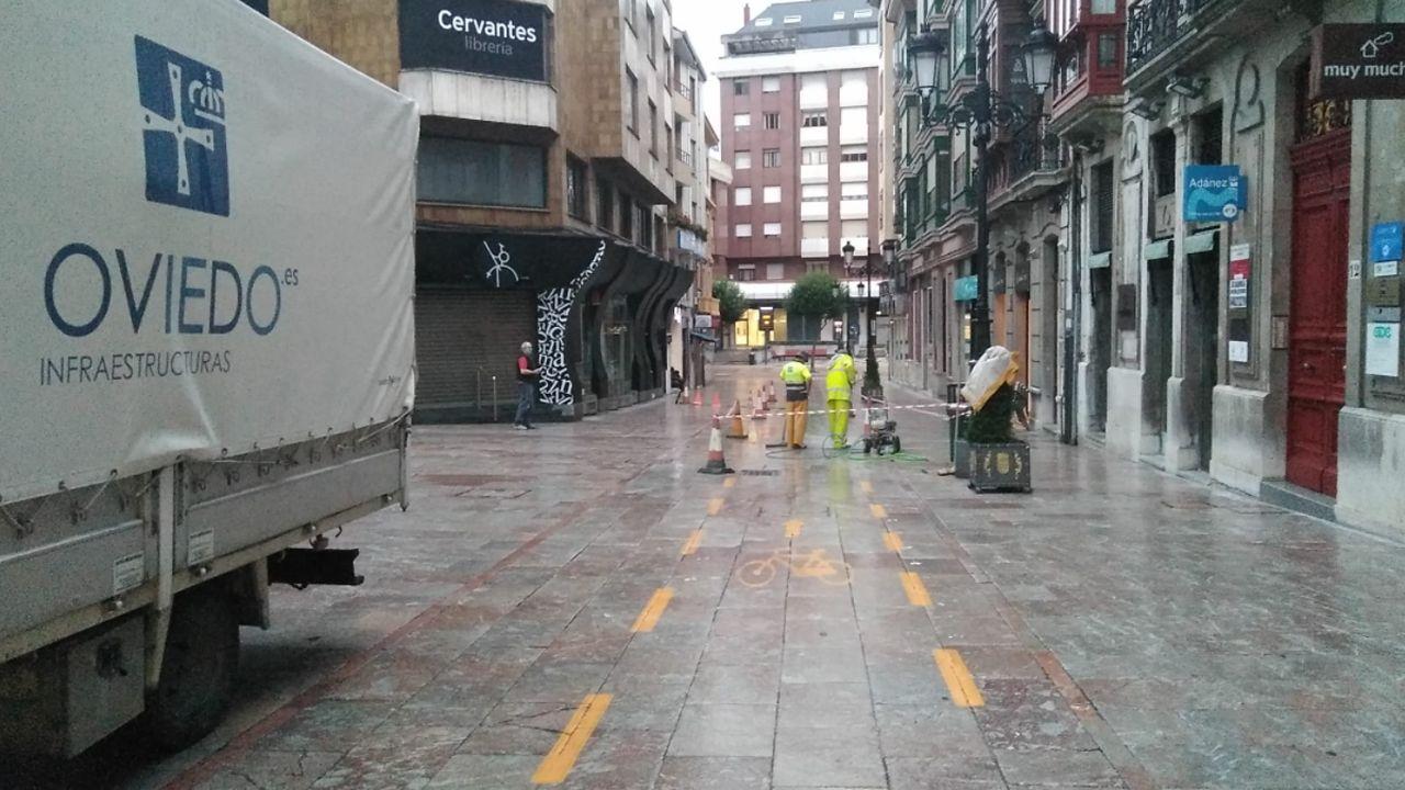 El borrado del singular carril bici de Oviedo