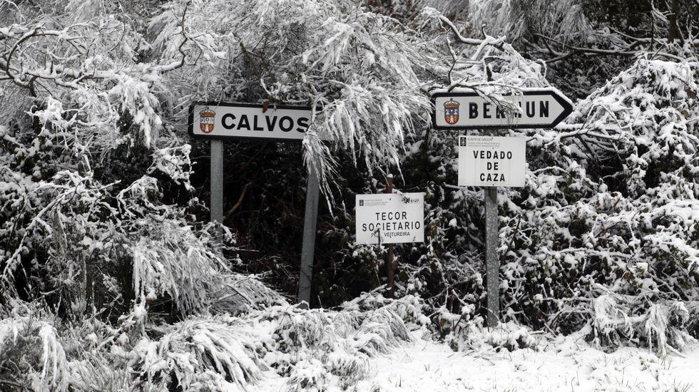 Estampa invernal en O Incio