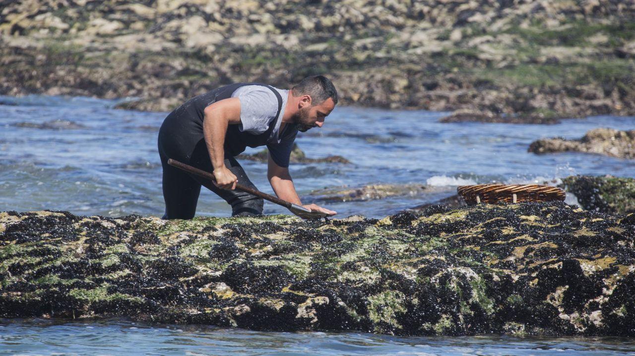 Imagen de archivo de un profesional recogiendo mejilla en la costa gallega
