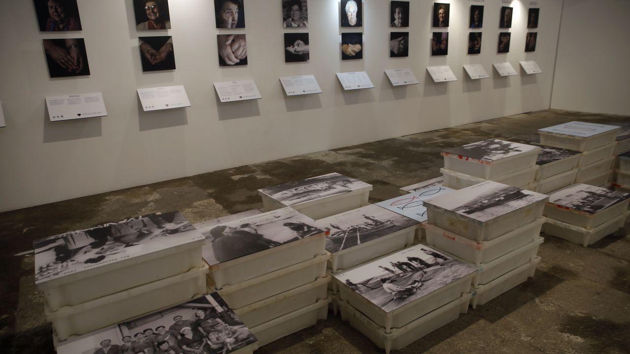 Varias exposiciones y actividades dan vida a «Amar a mar»