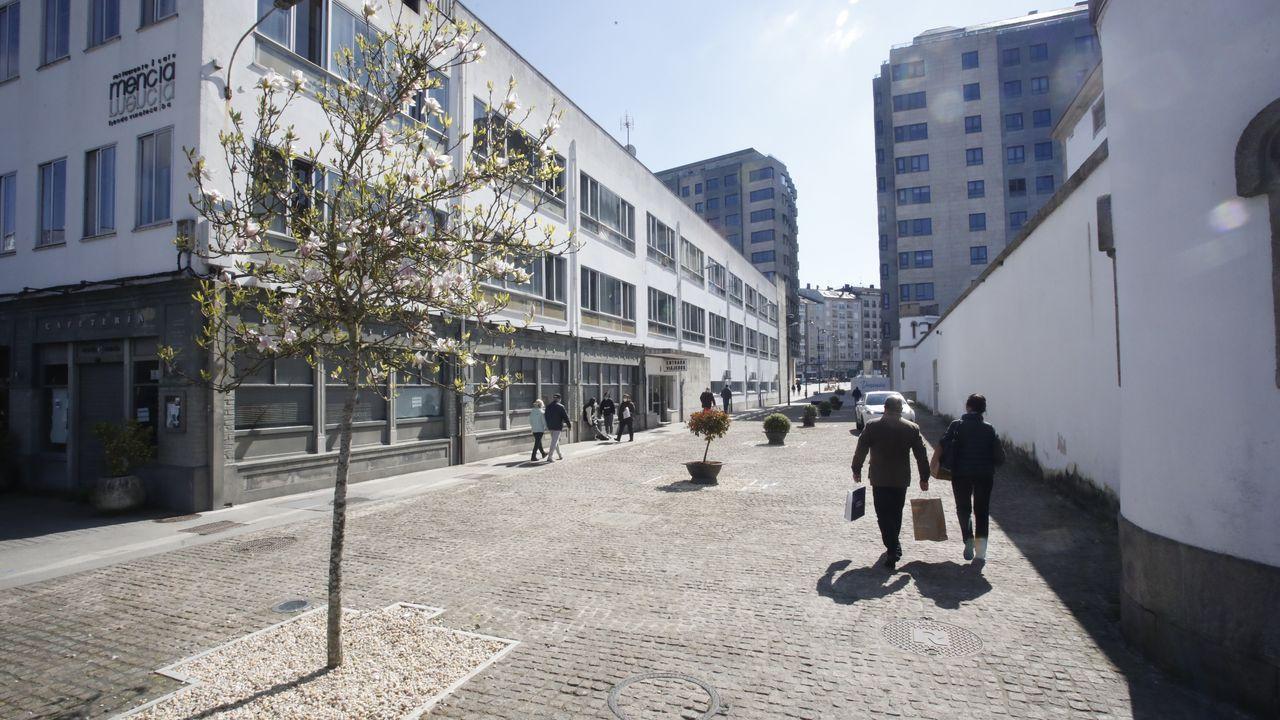 Pisos y casas que la Sareb ha rebajado Lugo.El cambio estético en la Rúa Soto Freire con la colocación de setos y algún árbol