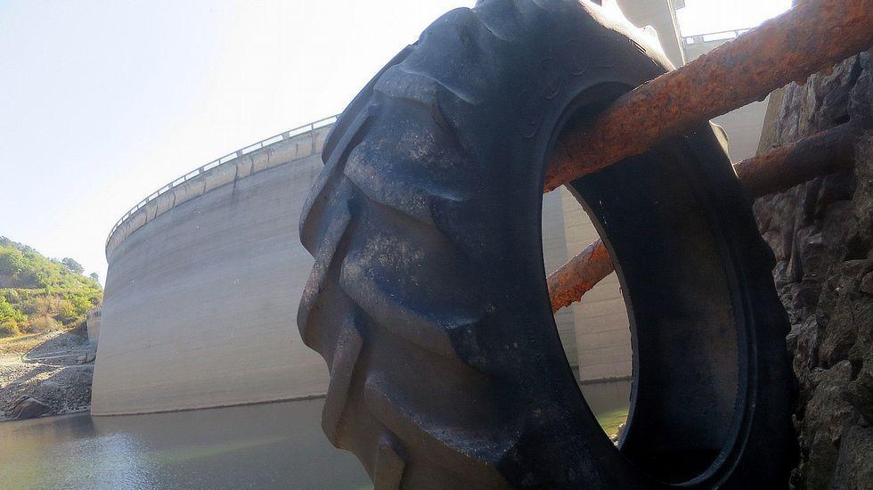 Un vello tronco de árbore que frotaba no encoro quedou colgado dunhas barras metálicas no muro da presa