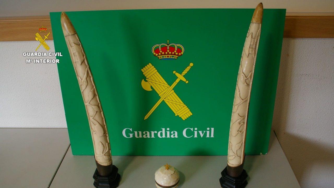 El Seprona incauta dos colmillos de elefante y un copón de marfil en Cambre.Fachada de la Audiencia Provincial de Lugo