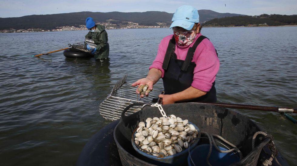 Buscan a un pescador desaparecido en O Portiño.Vistas a la playa Area Maior y a Atalaia desde una de las plantas del edificio