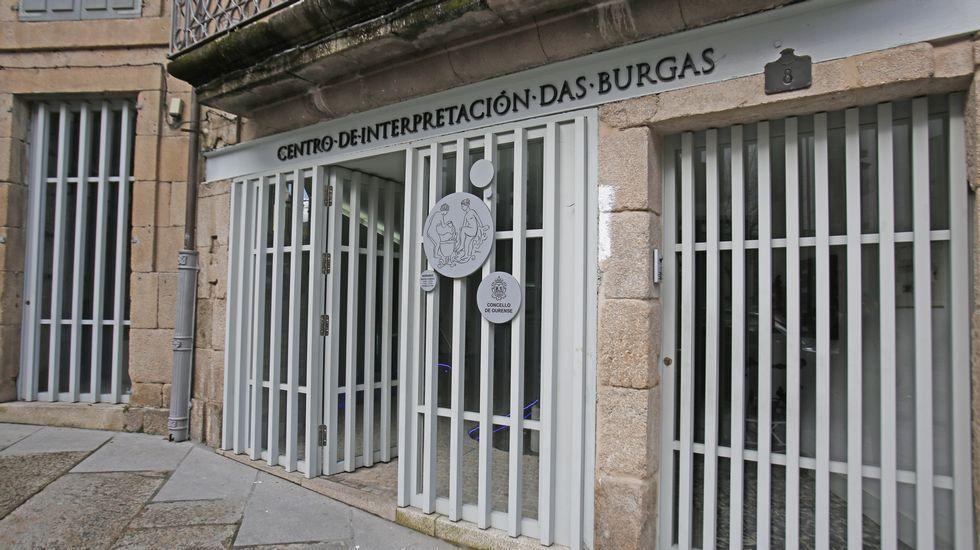 Tilos plateados del entorno de San Domingos de Ribadavia.