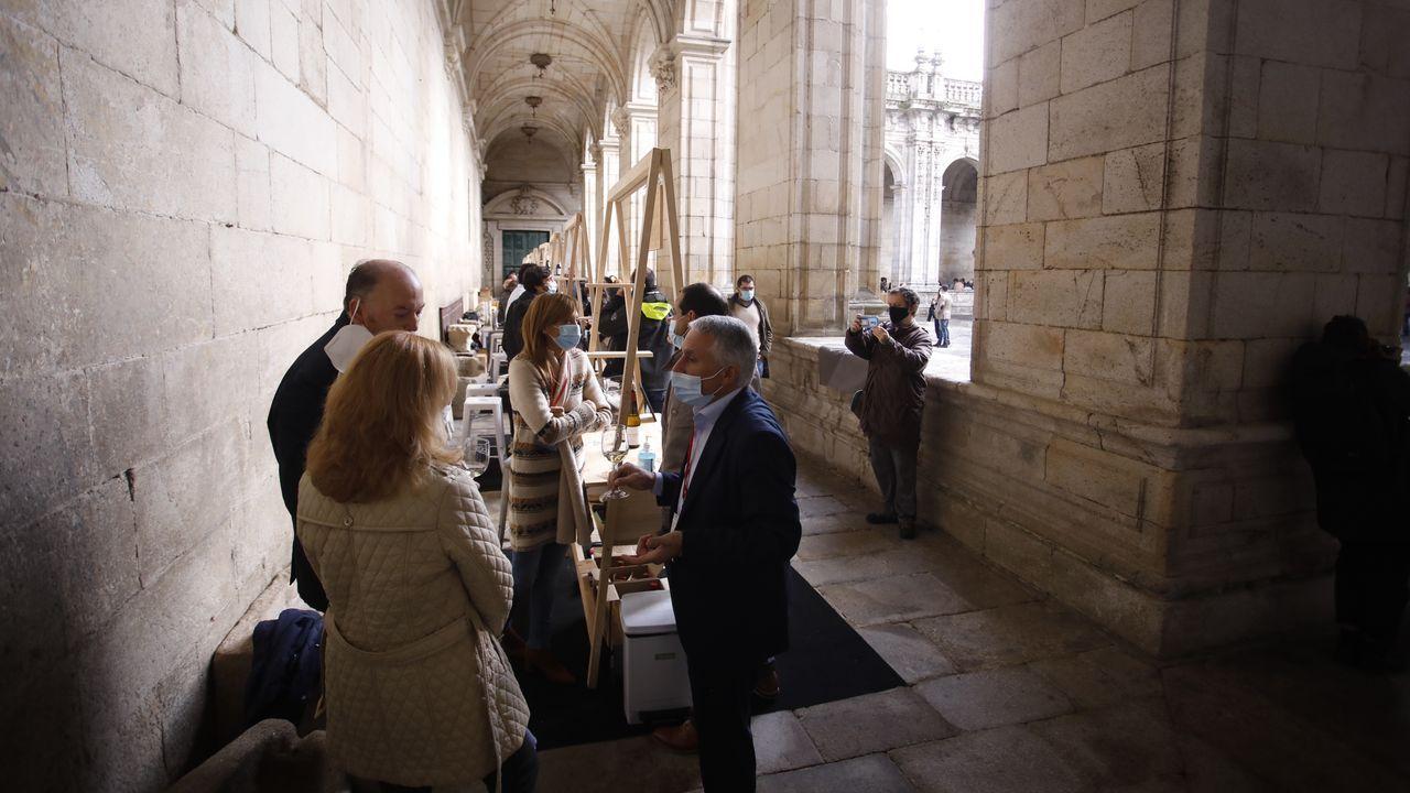 Lucus in Vino Veritas en el Claustro de la Catedral