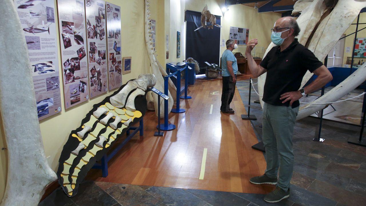 Tras más de dos meses de parón, el museo de la SGHN ha recuperado este lunes las visitas públicas