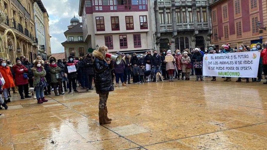 Manifestación a favor del derecho de los animales