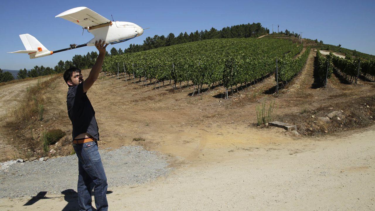 Gabriel López espera que la cosecha de manzanas de este año sea la primera de su producción de sidra