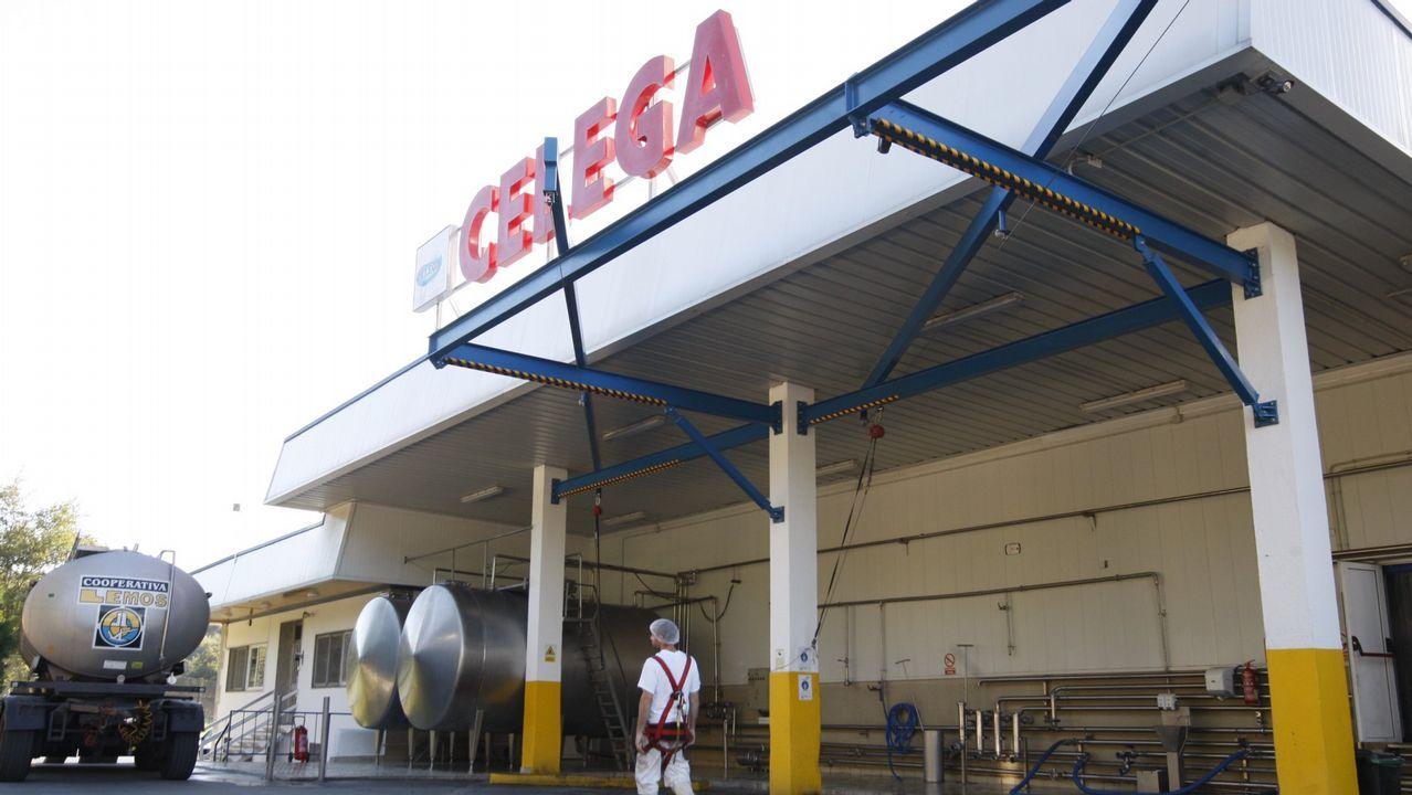 El Mercado de Frutas de A Grela más solidario.Fábrica de Celega (Central Lechera de Galicia) cerca de Escairón