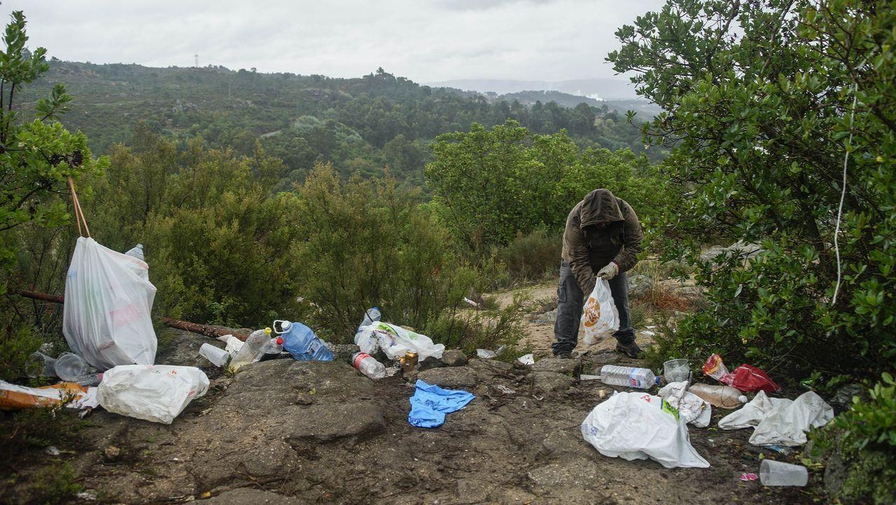 MAGOSTOS 2019.Magostos en Montealegre: Uno de los voluntarios, Ico Rafael, limpiando de basura el monte