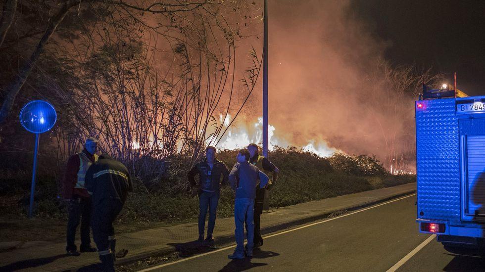 El fuego desatado ayer por la tarde en la localidad vizcaína de Berango, Vizcaya, sigue activo hoy por la mañana y avanza hacia Sopelana a pocos metros de viviendas y polígonos industriales de la zona.