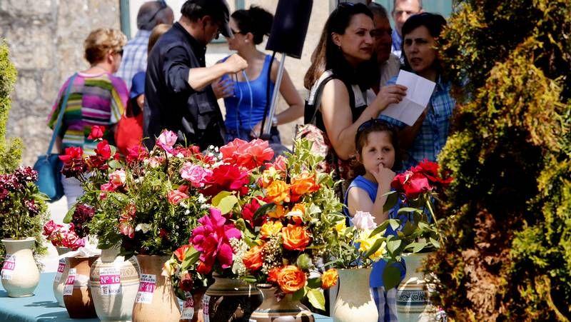 Elena Salgado y Miguel Ángel Fernández Ordóñez boicotearon la fusión de las cajas.