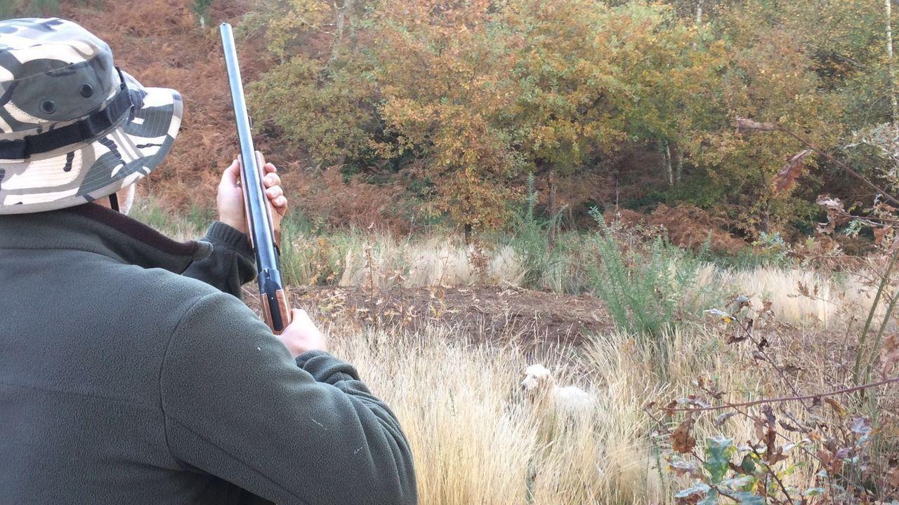 Los tecores gallegos ven la caza como actividad de provecho para el medio rural