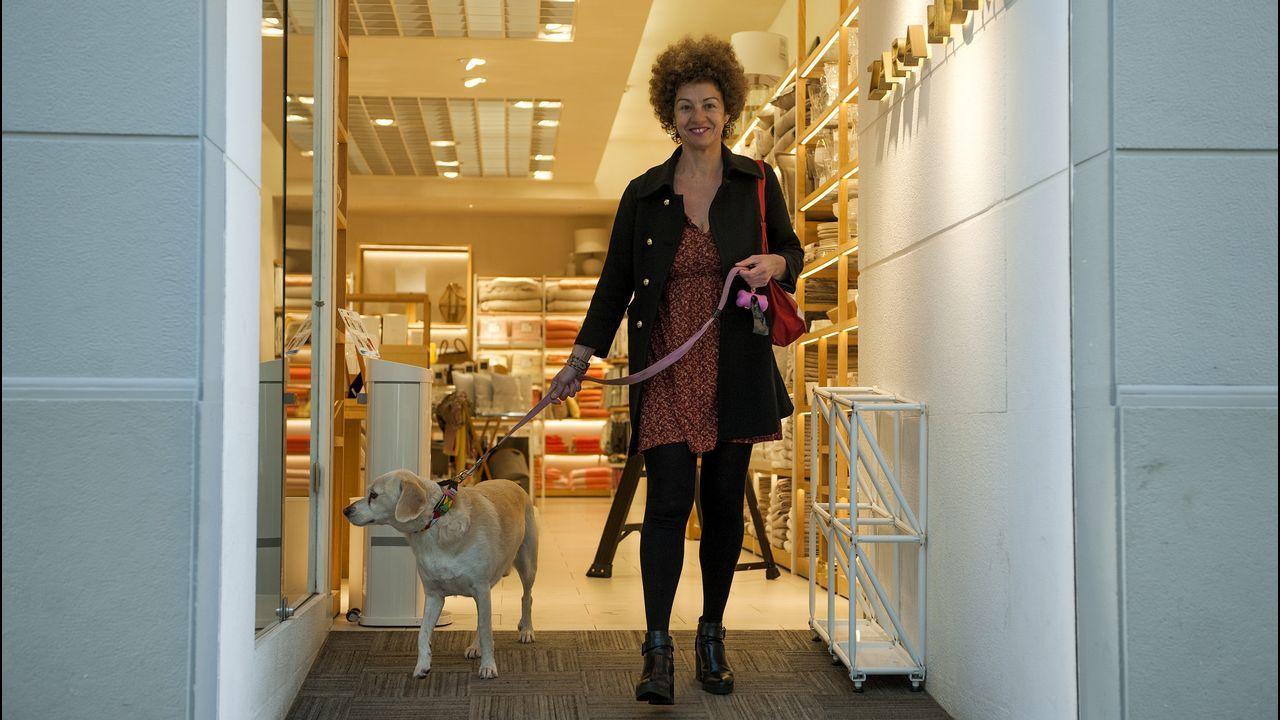 En el Zara Home de la calle Real permiten el acceso de perros con correa