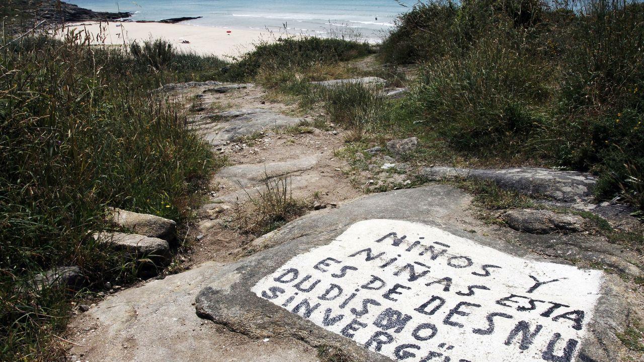 Crías de píllara en las las dunasen la playa sonense de Espiñeirido.Integrantes de la Cruz Roja participan en las labores de búsqueda de los desaparecidos